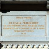 decillia_ferdinando